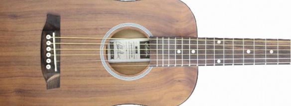 Cestovní kytara Ashton Mini20