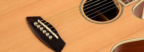 Elektroakustická akustická kytara Ibanez TCY 10E