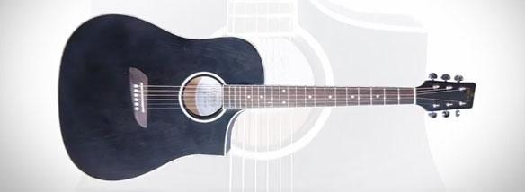 Akustická kytara Pecka DPF-190C
