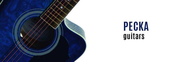 Elektroakustická kytara Pecka DPF-19CEQ